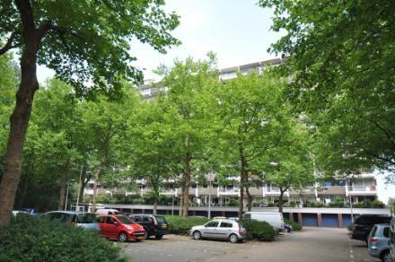 afbeelding woning met adres Jisperveldstraat 180 1024AJ, Amsterdam